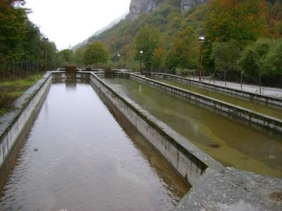 Стоимость недвижимости черногории